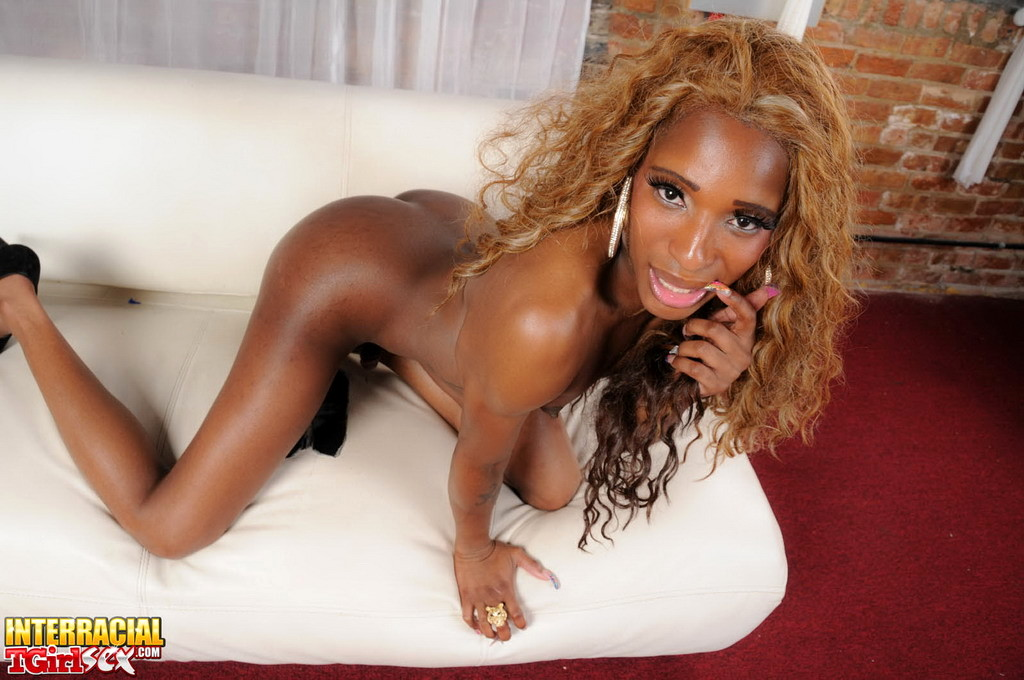Black Beauty Ariel Poses Wanks