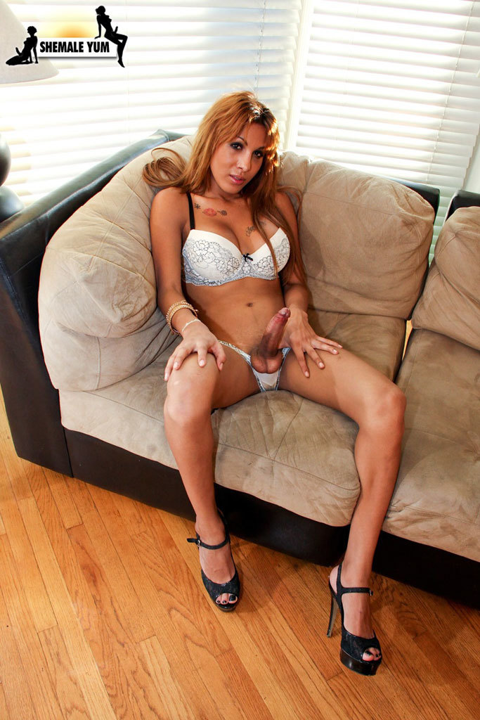 Huge Cock Latina TS Bares All For You!