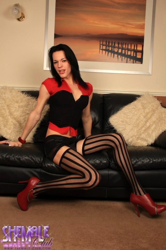 Perfect Transsexual Stripping In Spicy Black Stockings