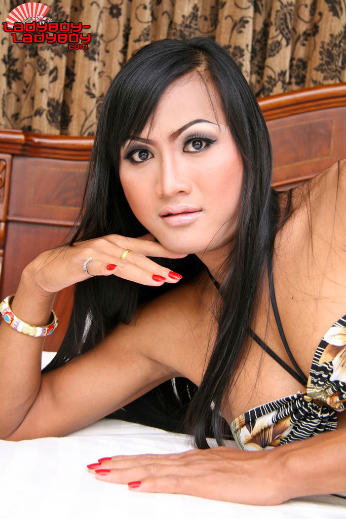 Super Sweet Transexual Babe