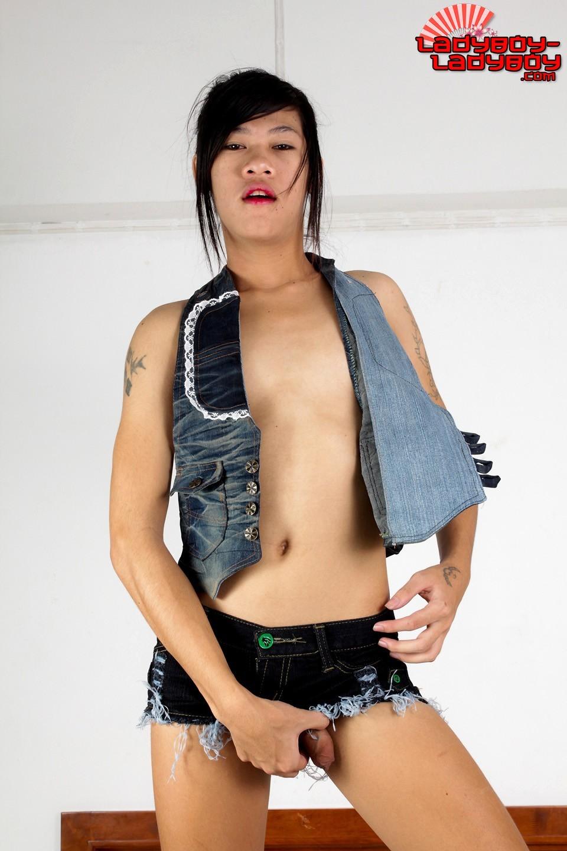 Transexual Tranny Set 1473