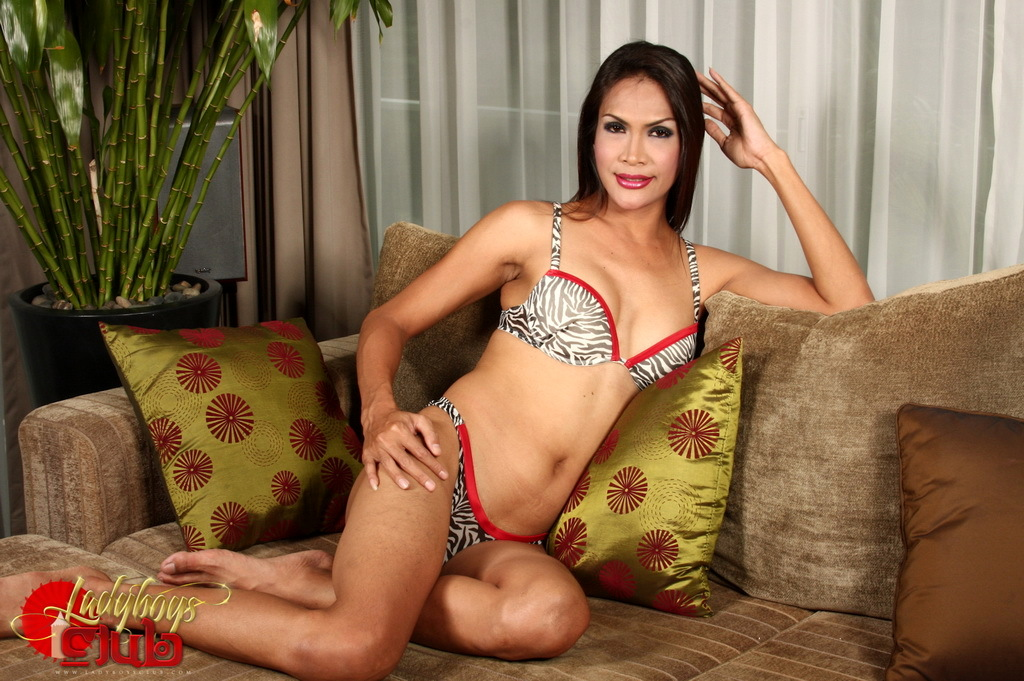 Exotic Justine Spreads And Stroke's